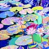 Waterlilies in Teal by